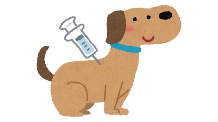 いつまで 狂犬病 ワクチン